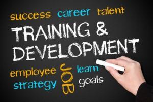 Training and Development - Business