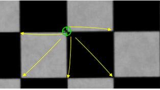 VIKAS - coordinates calibration on plate